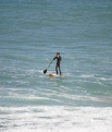 Paddle Boarder on Fistral Beach